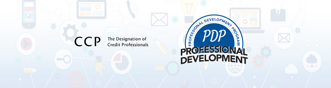 The Professional Development Program